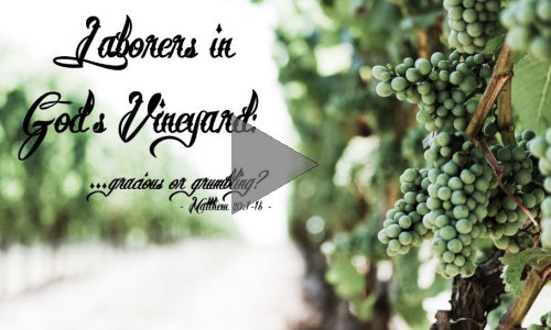 95 Laborers in God's Vineyard